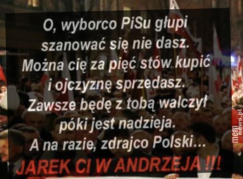 wyborca-pisu.png